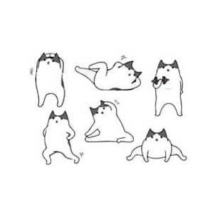 gatti fitness