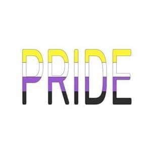 pride non binario